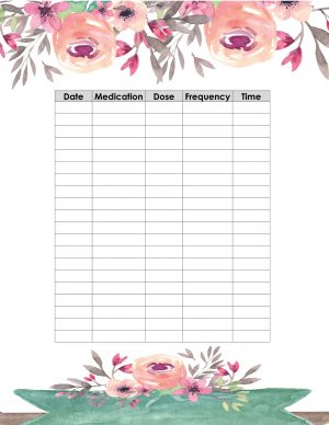Printable medication log