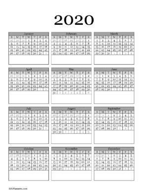 Year at a glance