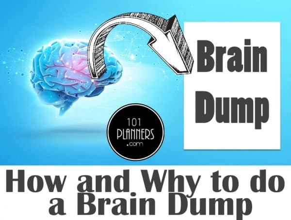 The Brain Dump